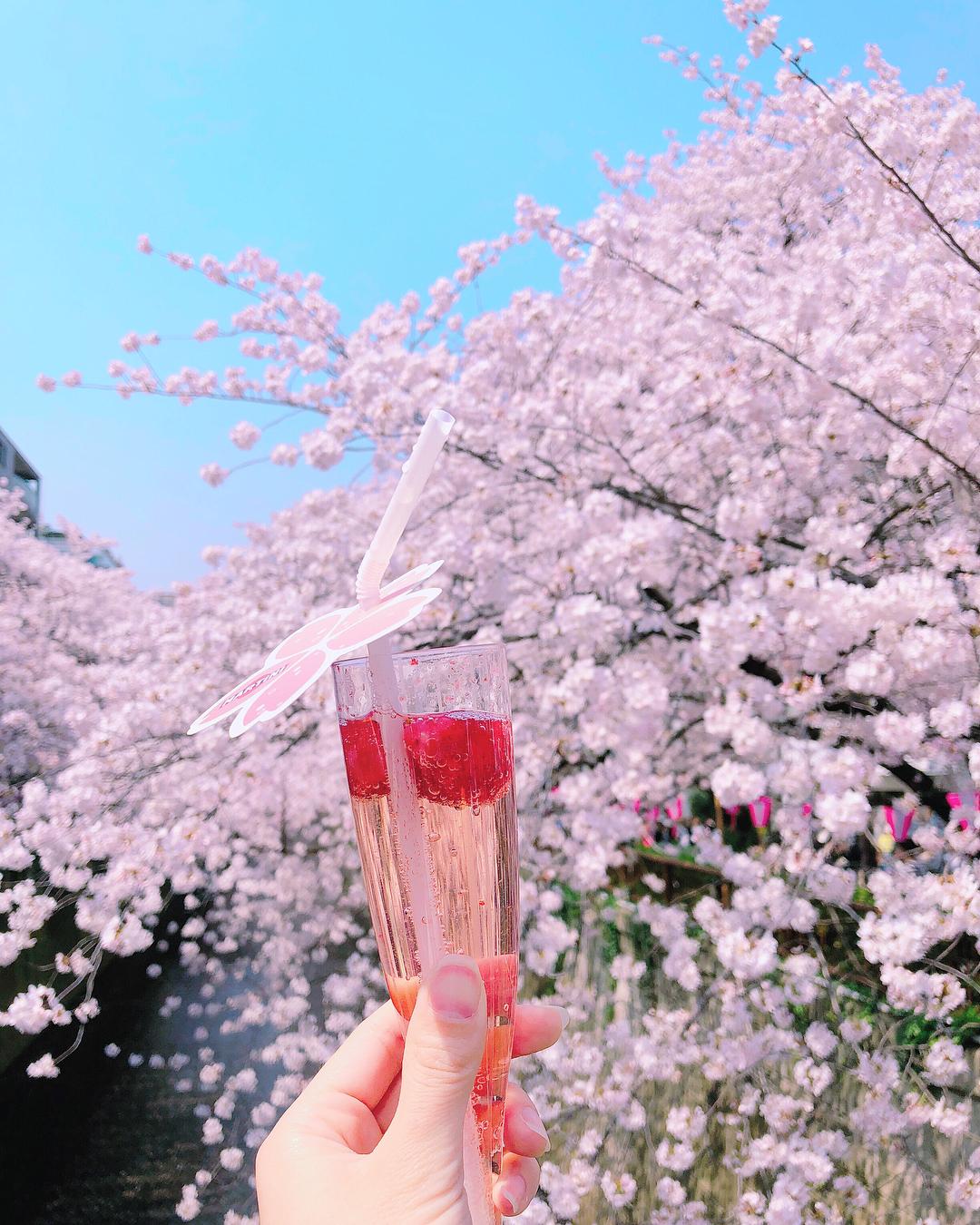 【関東】2018年東京のお花見スポットおすすめ6選!!