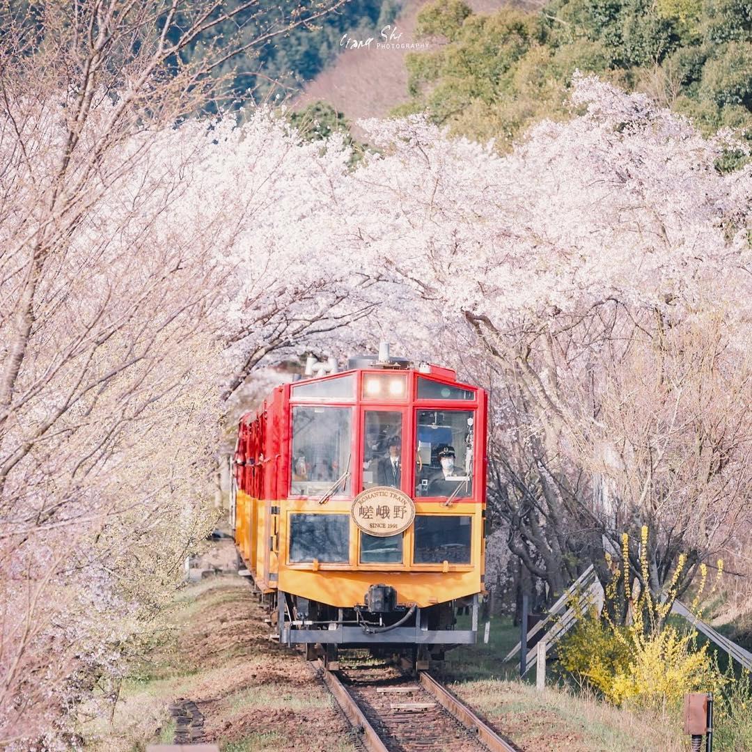京都 嵯峨