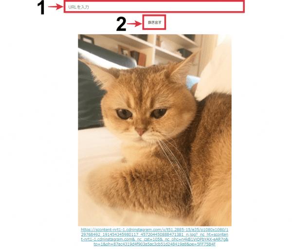 手順⑧「awakes.netに保存したURL(画像付きで投稿された)を貼り付ける」の画像