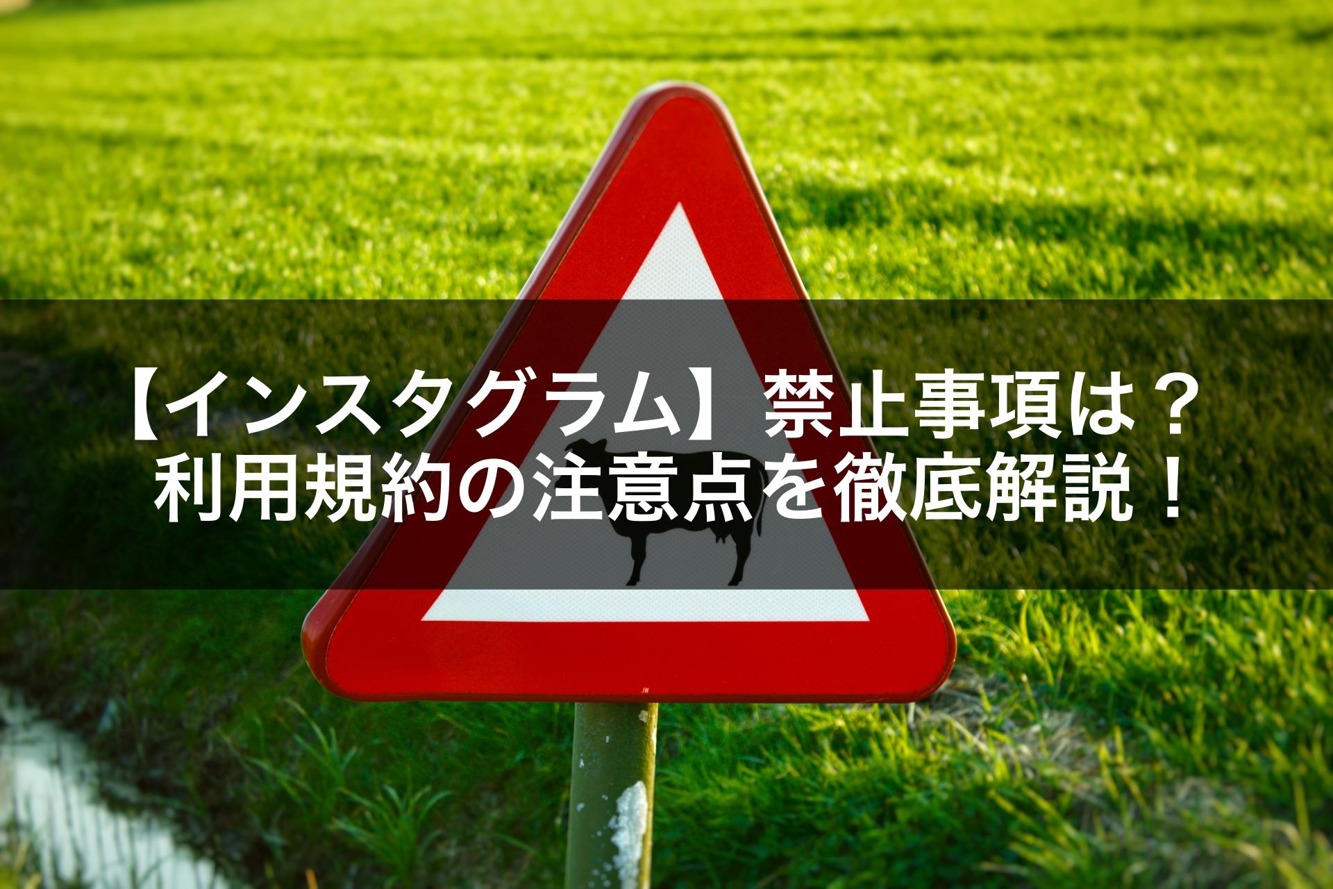 【インスタグラム】禁止事項は?利用規約の注意点を徹底解説!