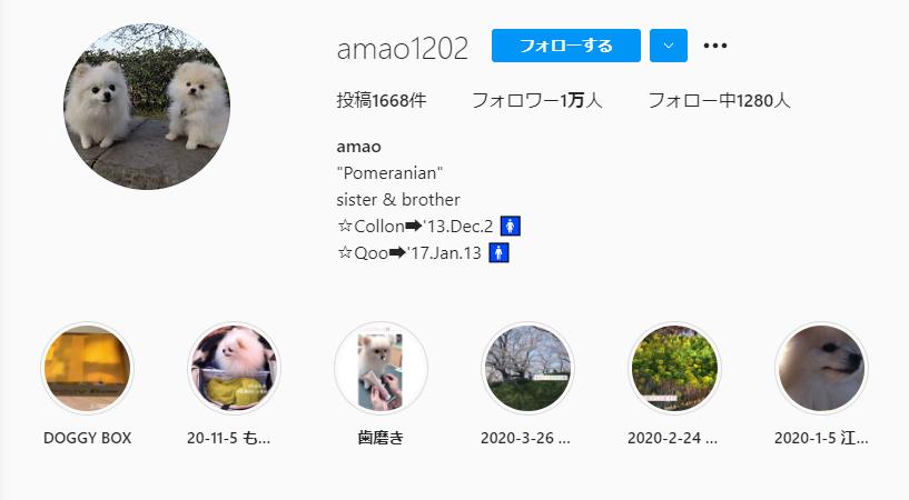 amao(@amao1202)さんのインスタアカウントの画像